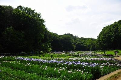 2009_06_20__4757