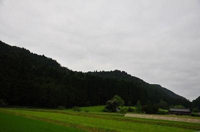 2009_06_28__4951