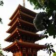 高幡不動五重の塔