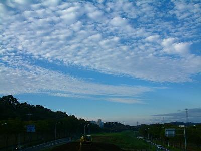 多摩のうろこ雲