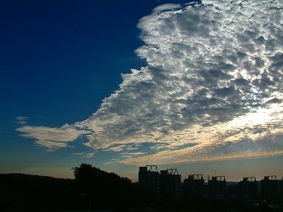 多摩の空に流れる雲